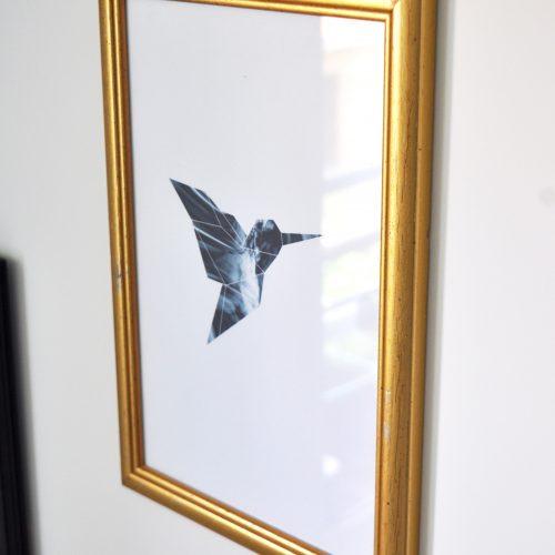 Cadre colibri 2