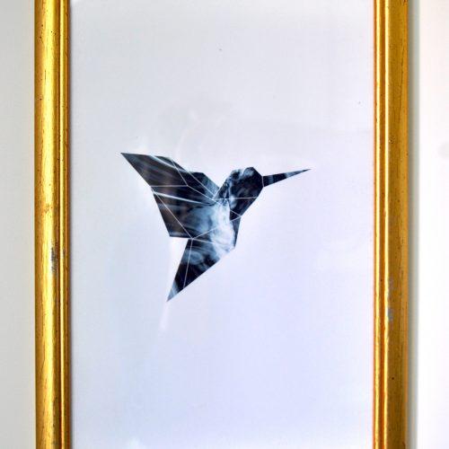 Cadre Colibri 1